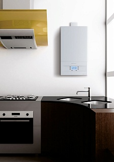 Котел газ. GCB 24 Basic Space Duo Fi  Electrolux  АКЦИЯ!!!